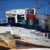 A reflection of 'potting' fishing boat Amadeus at Royal Quays Marina, North Shields